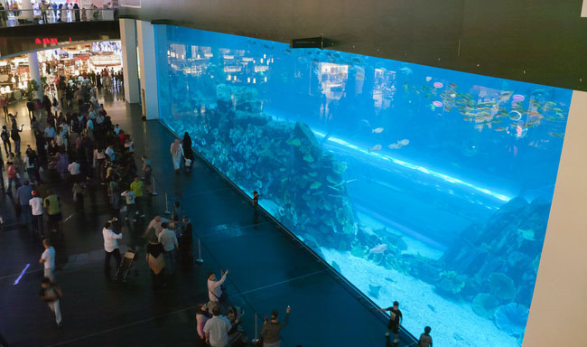 Dubai Aquarium and Underwater Zoo in the Dubai Mall is a must see / visit