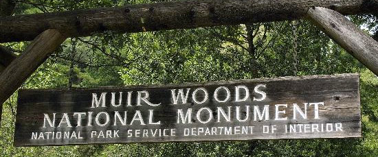 """sF-Muir-Woods-TA"""" srcset=""""https://www.wajeez.com/wp-content/uploads/2013/11/SF-Muir-Woods-TA.jpg 550w, https://www.wajeez.com/wp-content/uploads/2013/11/SF-Muir-Woods-TA-300x124.jpg 300w"""" sizes=""""(max-width: 550px) 100vw, 550px"""" /></p> <p>Go early in the morning when the fog is still low and the park is nearly empty (you""""ll avoid all the tour buses and big groups). There's a nominal fee to enter and maps available, too. There is a boardwalk where you can stroll, or there are paths that lead up to a raised trail about 60 feet off the main trail which is mostly flat. Some have described the park as a spiritual experience and I would have to agree. Muir Woods is something literally anyone at any age or skill level can enjoy.</p> <h3>2: 12:00 pm, The Exploratorium, Pier 15 (Embarcadero at Green St)</h3> <p><a title=""""Exploratorium"""" href=""""http://www.exploratorium.edu/"""" target=""""_blank"""" data-wpel-link=""""external"""" rel=""""nofollow external noopener noreferrer"""">The Exploratorium</a> blends the feel of a traditional science museum with the intrigue and interaction that make it seem like a """"scientific funhouse"""" and an """"experimental laboratory"""". It's so groundbreaking that it's being cited as a prototype for a new style of participatory museums across the globe. Instead of looking at pictures and artifacts behind a glass pane, attendees will be able to learn by doing and get a fuller experience.</p> <p><img class=""""aligncenter size-full wp-image-1956"""" src=""""https://wajeez.com/wp-content/uploads/2013/11/SF-Exploratorium-Wikimedia.jpg"""" alt="""