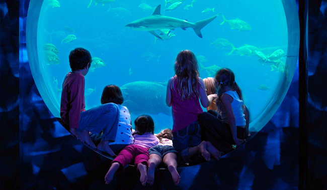 One thing is for sure, kids LOVE Atlantis The Palm hotel.