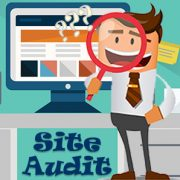 Audit your site