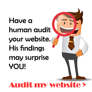 web site audit